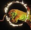Цирки в Лаишево